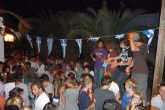 party_2008_13