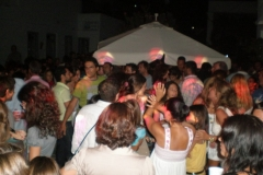 party_2008_29