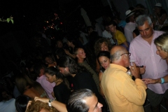 party_2009_07