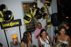 party_2010_11