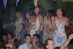 party_2010_16