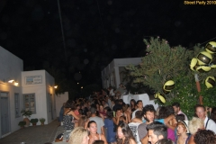party_2010_25