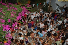 party_2010_33