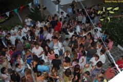 party_2010_34