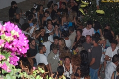 party_2010_35