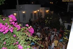 party_2010_36