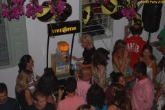 party_2010_38