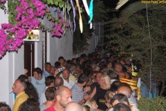 party_2010_41