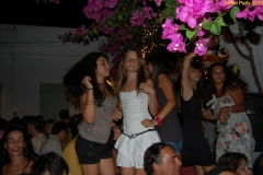 party_2010_43