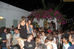 party_2010_44