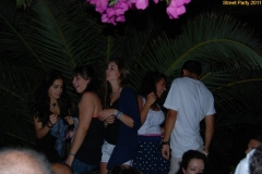 party_2011_011
