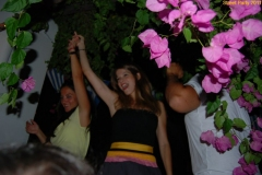 party_2011_015