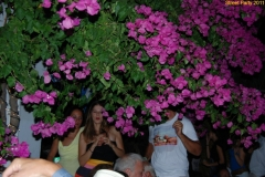 party_2011_018