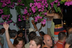 party_2011_031