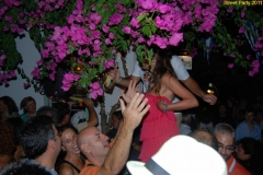 party_2011_048