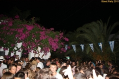 party_2011_098