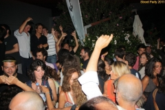 party_2011_101