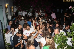 party_2011_106