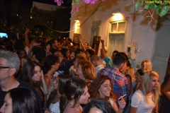 party_2012_11