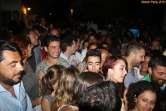 party_2012_37