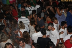 party_2012_50