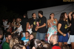 party_2012_71