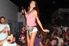 party_2013_05