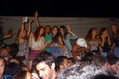 party_2013_06