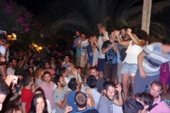 party_2013_13