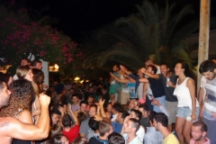 party_2013_14