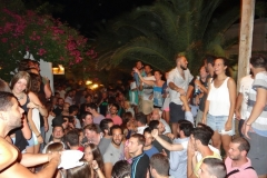 party_2013_15