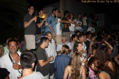 party_2013_24