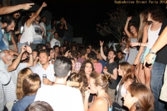 party_2013_25